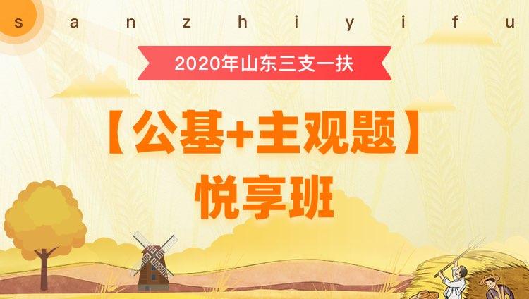 2020年三支一扶山东【公基+写作】悦享班