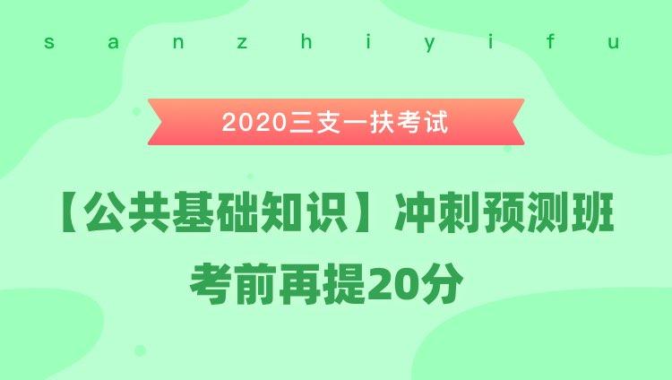 2020三支一扶考试《公共基础知识》冲刺预测班