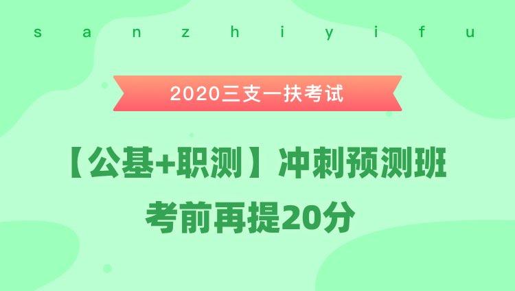 2020三支一扶考试《公共基础知识+职业能力测验》冲刺预测班