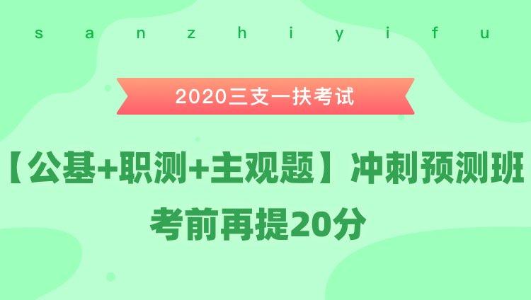2020三支一扶考试《公基+职测+主观题》冲刺预测班